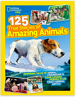 christmas gifts for kids who love animals
