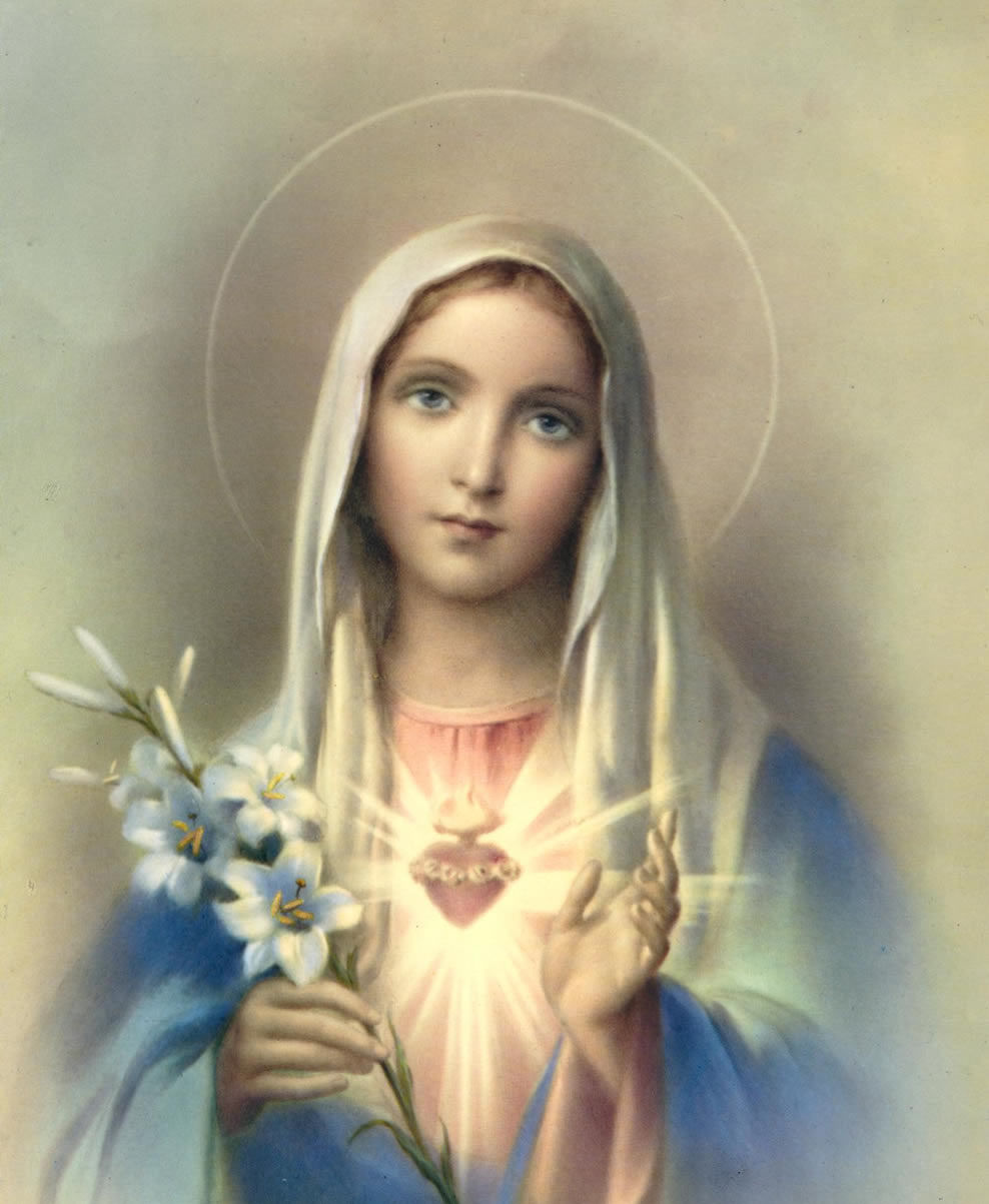 I love you Blessed Mother. Immaculate Heart of Mary pray for us. Amen.