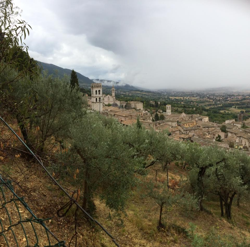thedhms-grounds-assisi.jpg