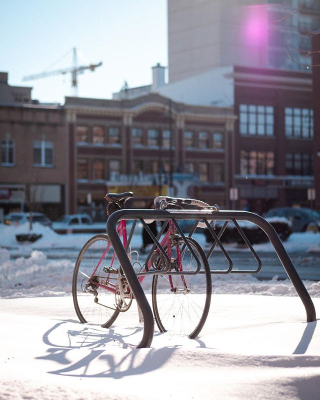 21/365  Pink bike. Pink light.  Spotted this rad pink bike in the light walking in #downtowniowacity  #365daychallenge #365project #365challenge #365photochallenge #snow #white #pink #bike #englert