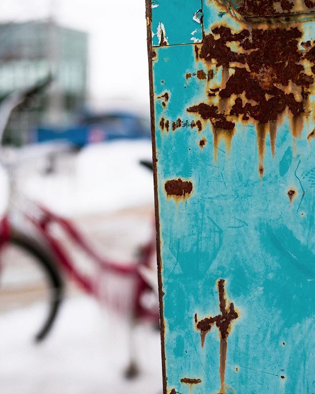 24/365  #365daychallenge #365project #365project2019 #dumpster #bike #rust #snow #minimalmonday #minimalzine #gominimalmag