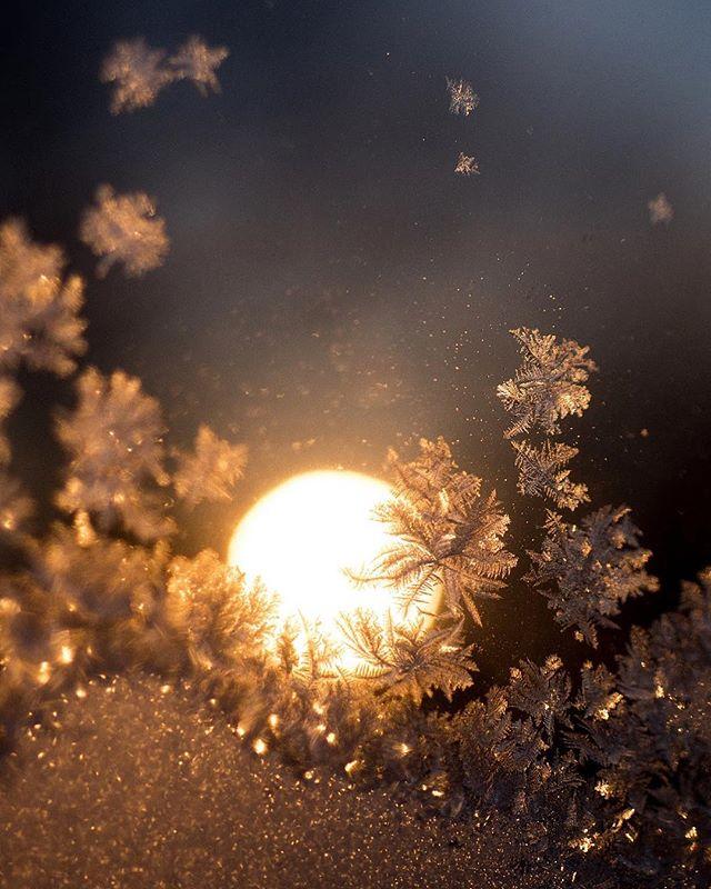 25/365  Evening frosted window over sunrise 🌅 #365daychallenge #365photochallenge #365project #orange #darkblue #frosted #cold #minimalmonday #minimalzine #sunrise #leviallen #habitsofexcellence