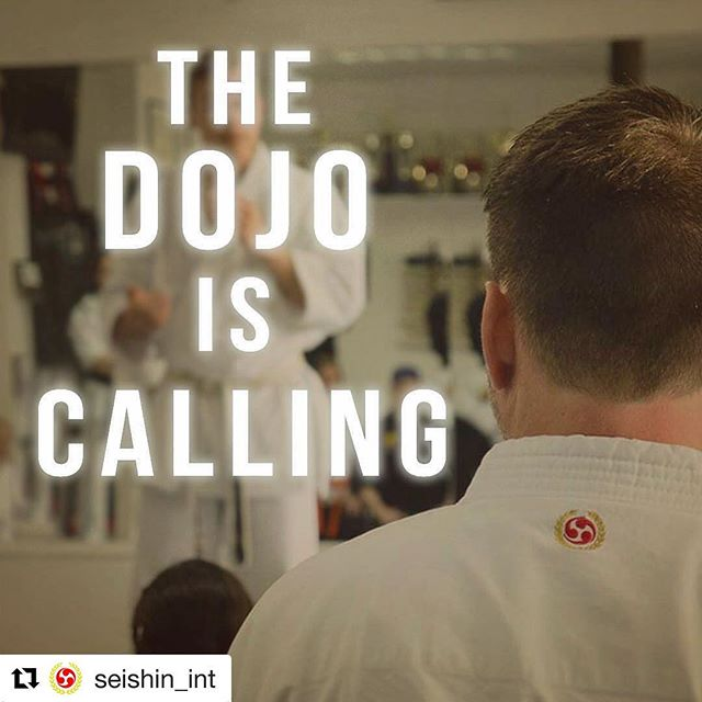 #Repost @seishin_int ・・・ Are you ready for the dojo? 👊 #SeishinGi