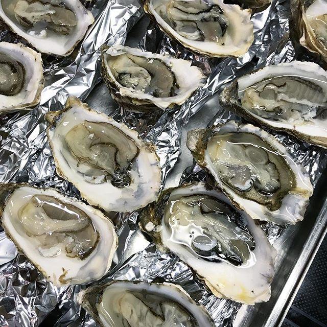 Bei der 1. Lobster Night in der Kitchen gab es übrigens auch bretonische Austern satt! Ein weiblicher Gast war mit 10 Stück Spitzenreiterin 🍤🐚🍾😋 #factorykitchenberlin #factoryberlin #austern #lobsternight