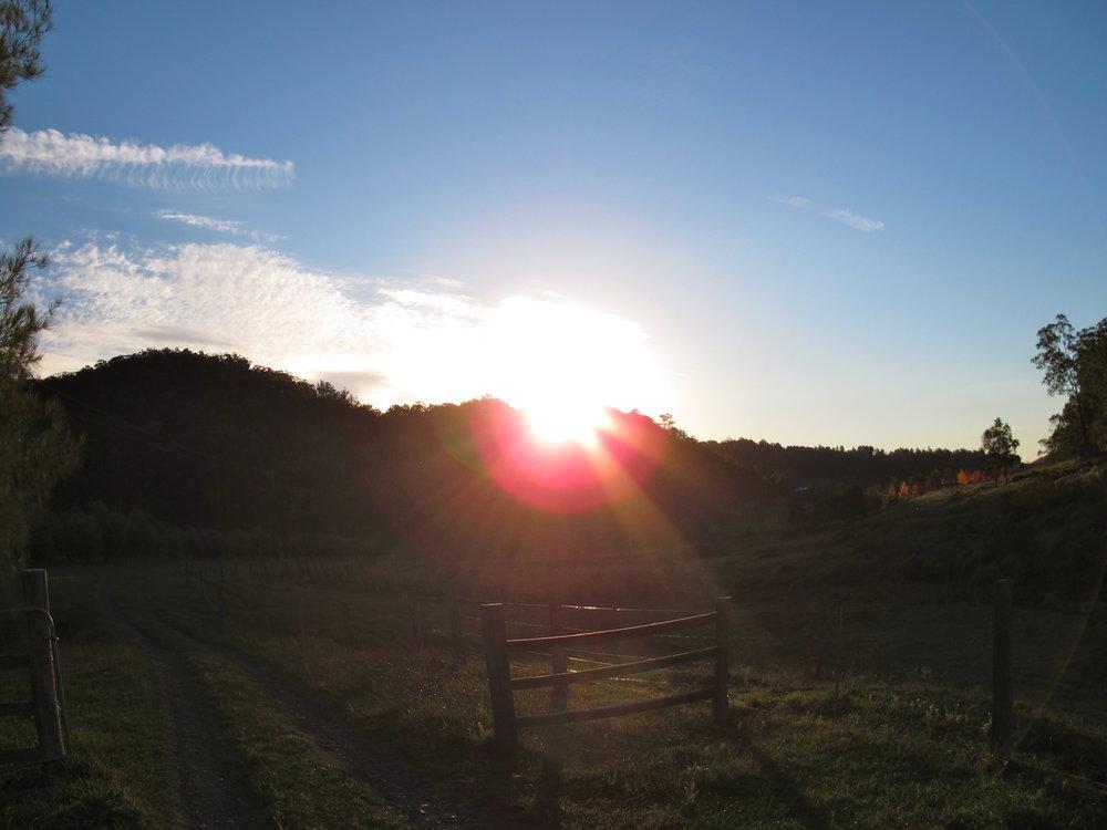 SunsetFarm.jpg