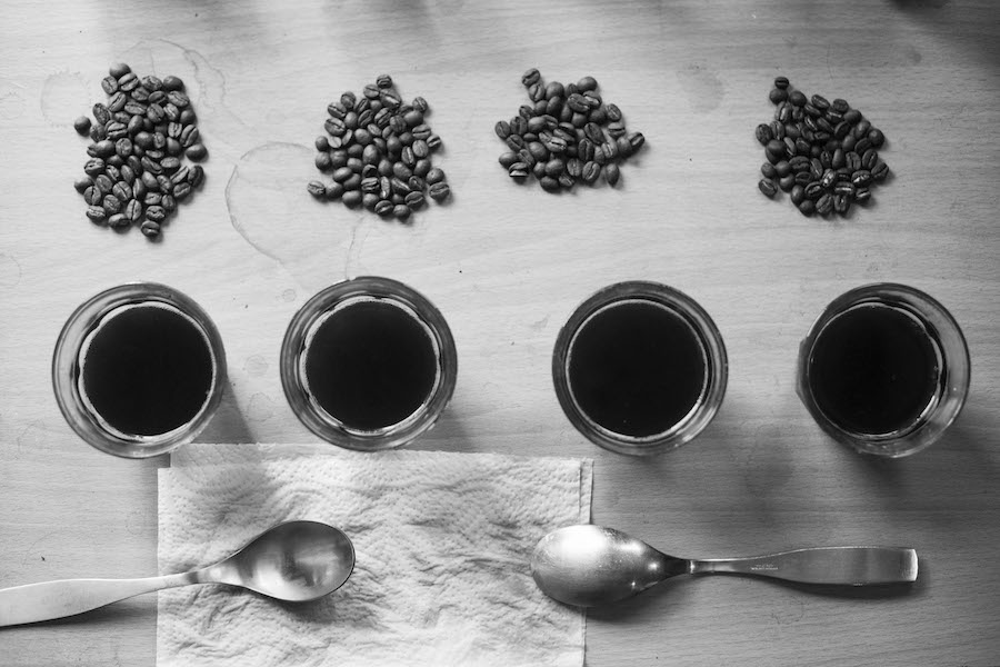 Coffee cupping at The Roasting Shed.