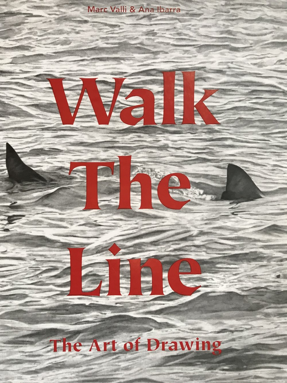 Walk the Line - The Art of Drawing