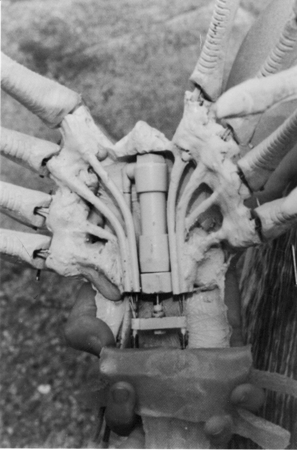 - A pneumatic compressed air actuator was used to pull & push the finger wires.The result was that the face hugger could walk in a crabbing style and clamp onto any unsuspecting being, inserting its eggs into whatever orifice it could find…….gruesome….