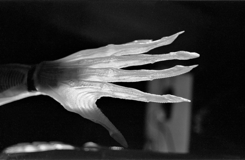 - Alien`s hand had extended claw like fingers.