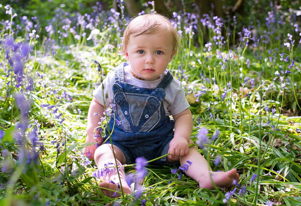 Sonny-bluebells-10-2.jpg