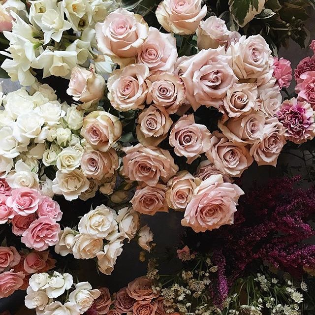Flower goals! Dusty soft pinks are 😍. We are busy working on a bespoke job for a winter wedding which is perfect seeing as it's freezing outside. Photo by @bloomschooltoronto . . . #weddingflowers #wedding #bride #groom #flowergoals #wedmin