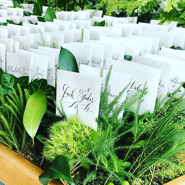 Look where my escort cards found a little home in the greenery 🤗 I love this botanical display with @davidmhandyevents . . . . . #escortcards #calligraphy #botanical #contemporary #wedding #nantucket #escortdisplay #design #event #handlettering #gorgeous #greenery #events #weddinginspiration