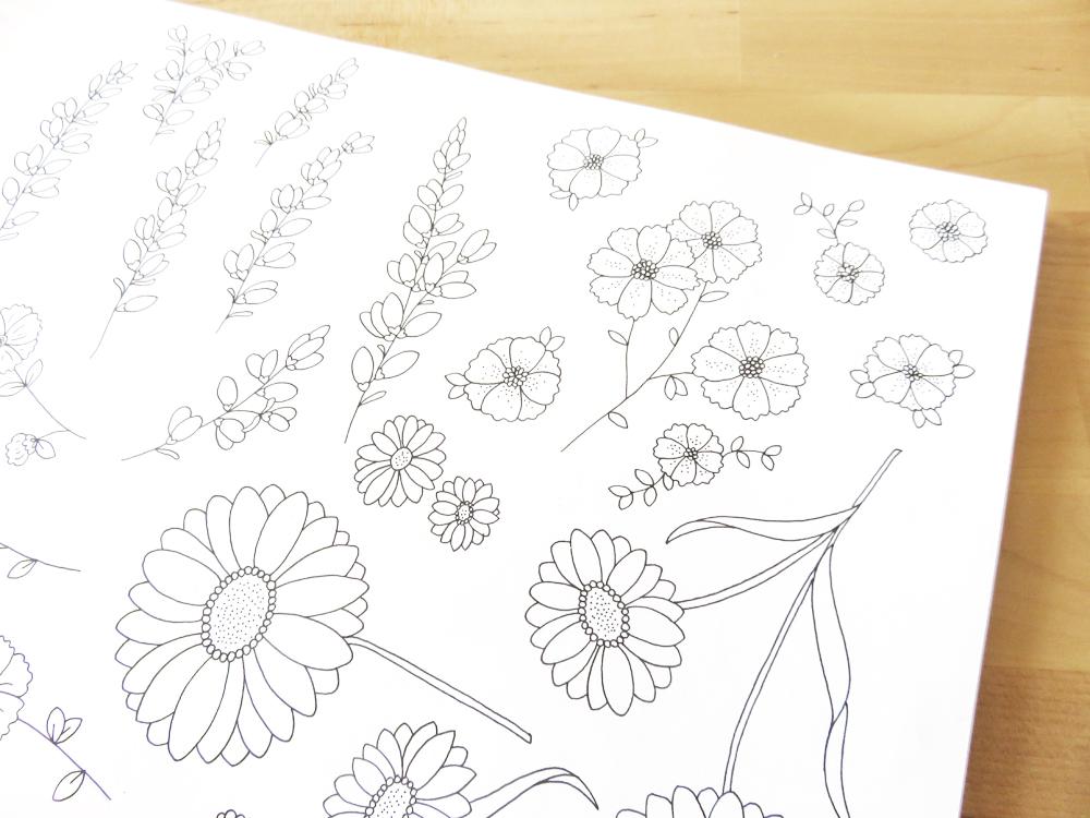 Bea & Bloom Illustrated Wedding Stationery Sketchbook Meadow Flowers