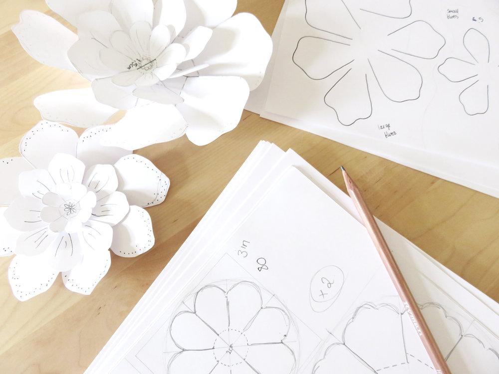 Bea and Bloom Studio Snapshots