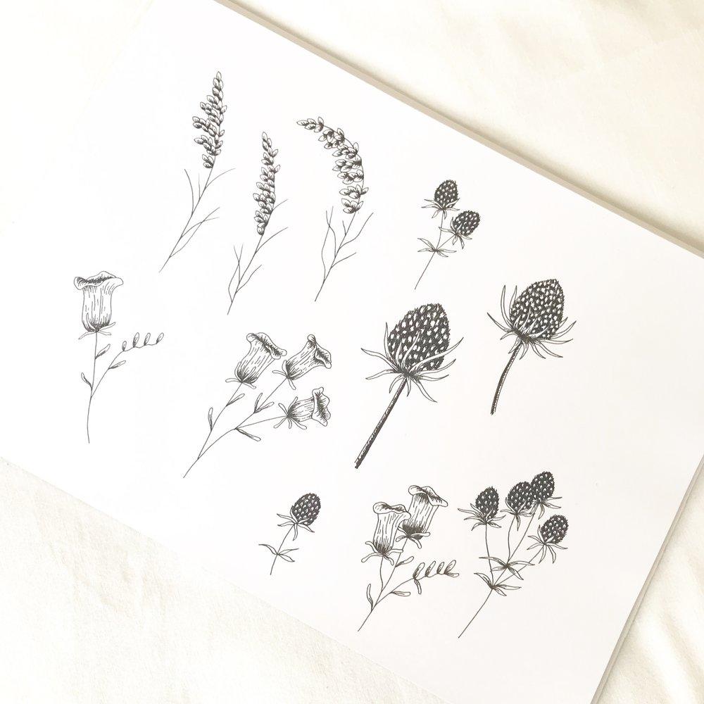 Logo & Branding Design Bea & Bloom Creative Design Studio sketchbook