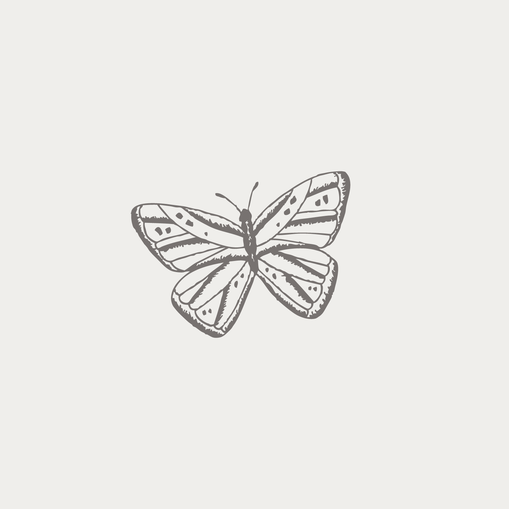 #the100dayproject butterfly illustration Bea & Bloom | Creative Design Studio