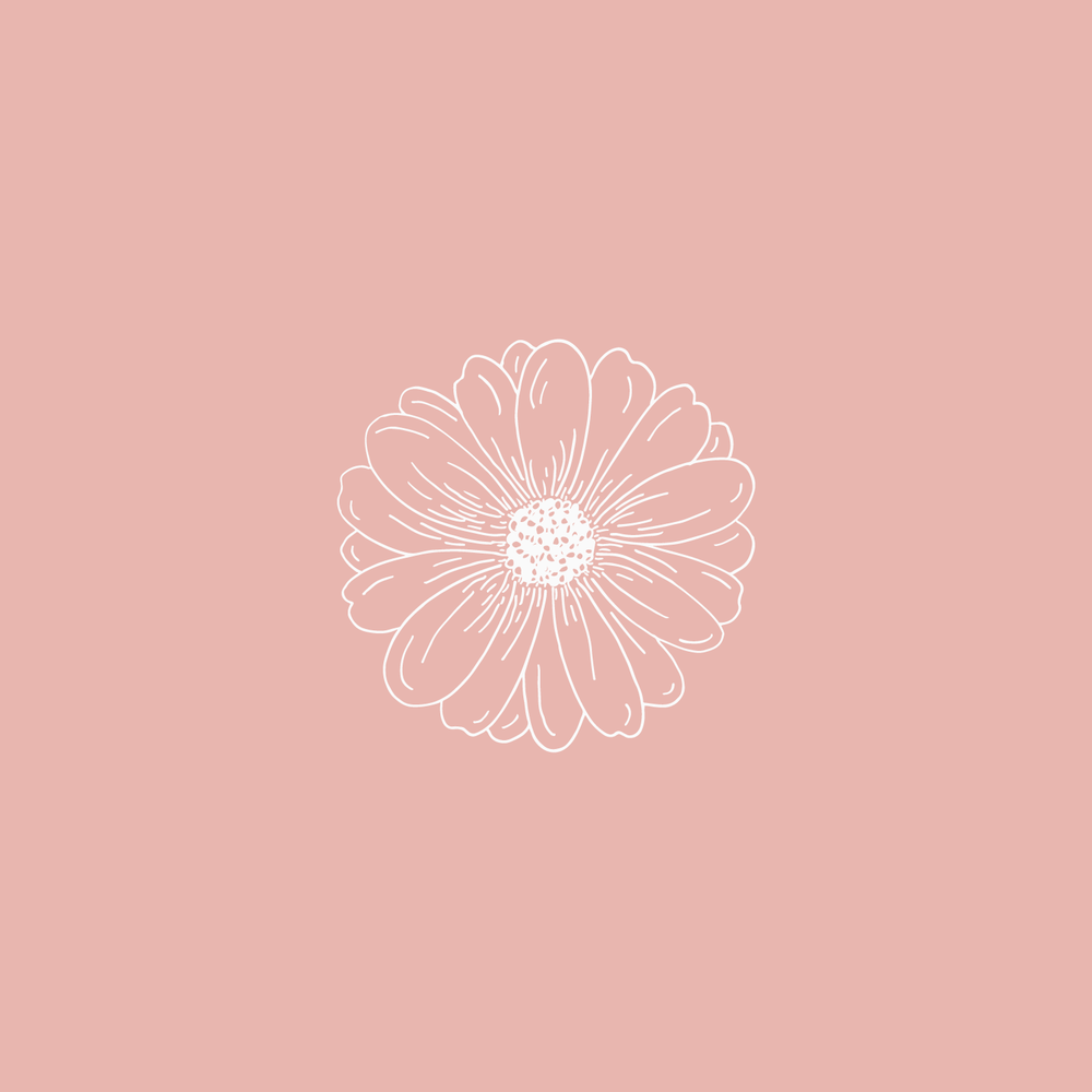 #the100dayproject daisy flower illustration Bea & Bloom | Creative Design Studio