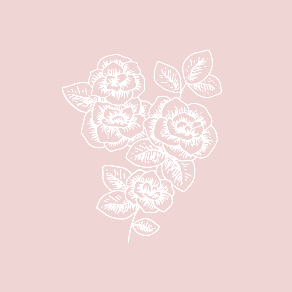 Bea & Bloom Creative Design Studio - Floral Illustration - The Language of Flowers