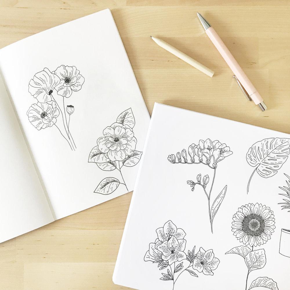 Floral sketchbook illustrations - Bea & Bloom Creative Design Studio