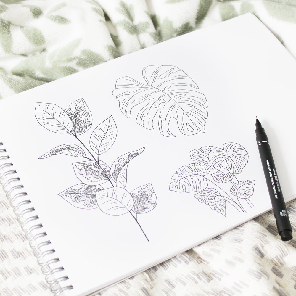 Plants sketchbook illustration - Bea & Bloom Creative Design Studio