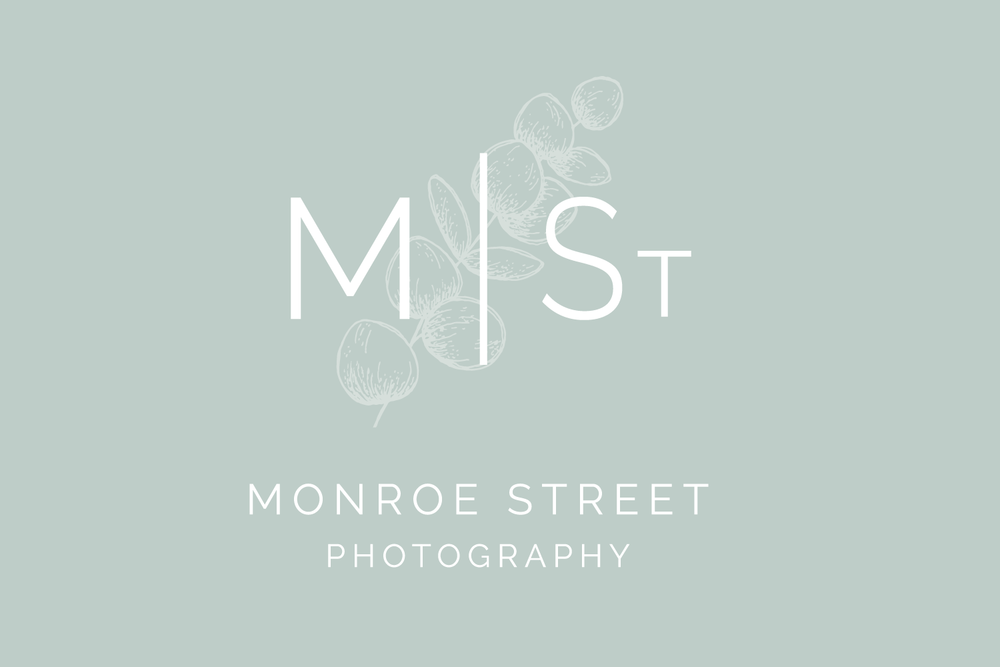 Monroe Street Photography - Logo & Branding Design by Bea & Bloom Creative Design Studio
