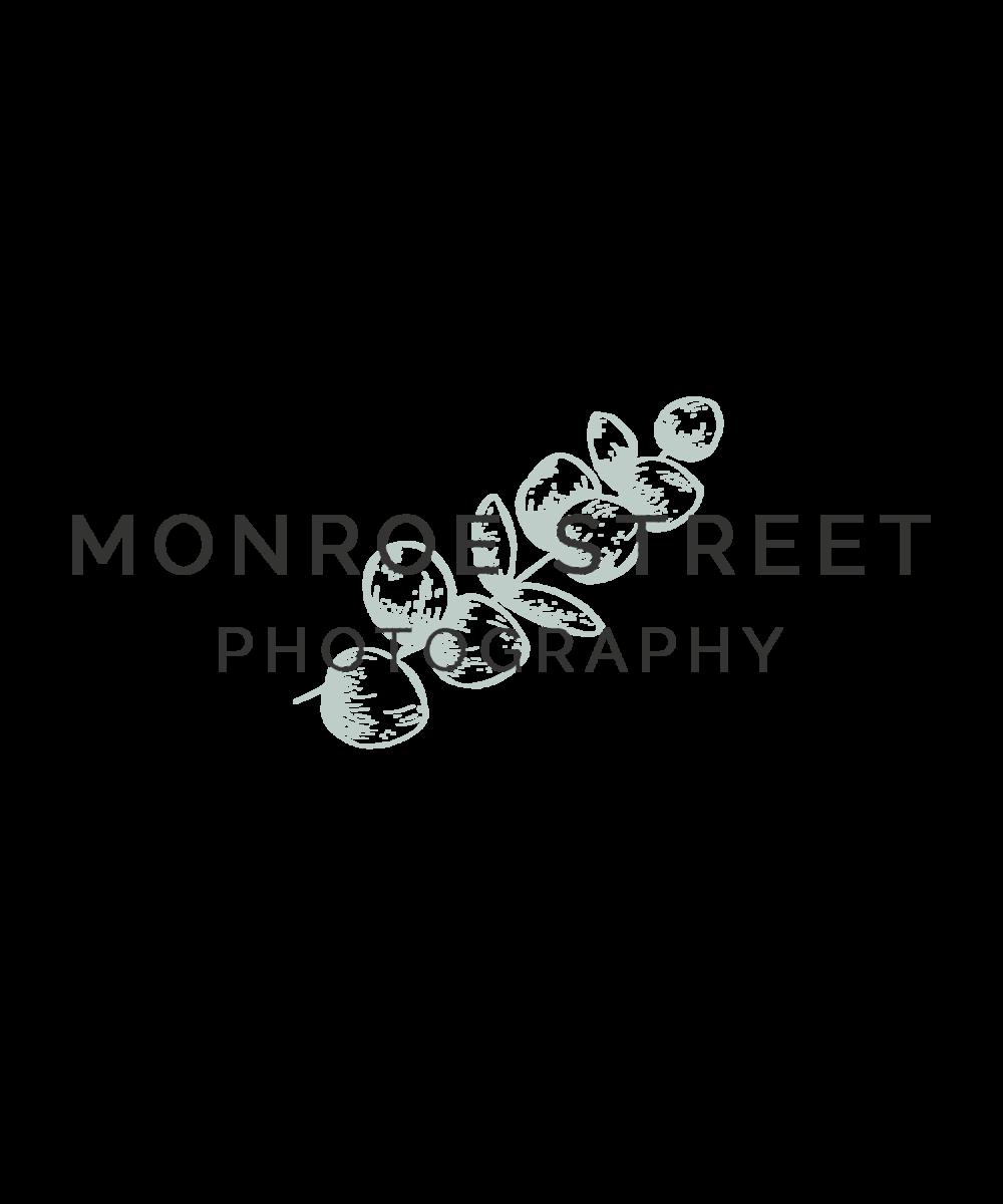 Monroe Street Photography - Logo & Branding Design by Bea & Bloom Creative Design Studio