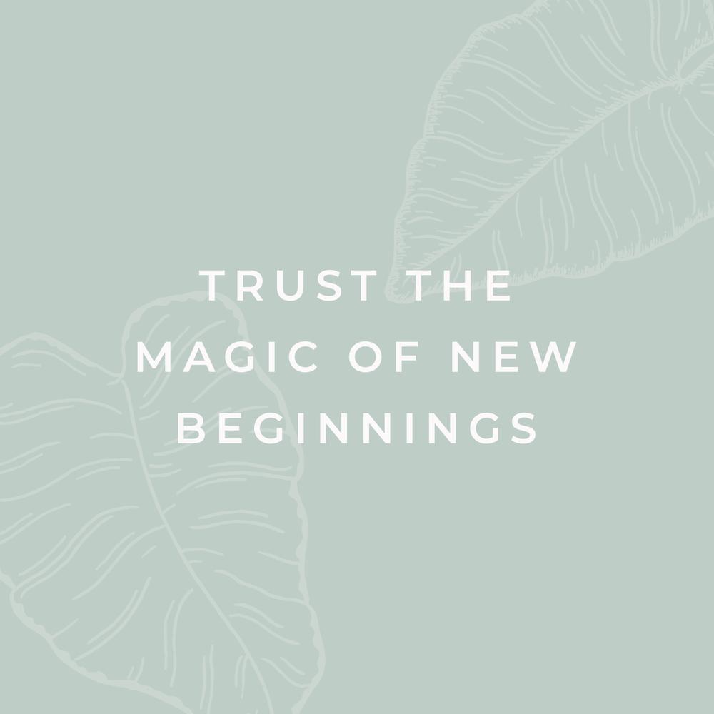 Bea & Bloom Creative Design Studio - Inspirational Motivational Quotes