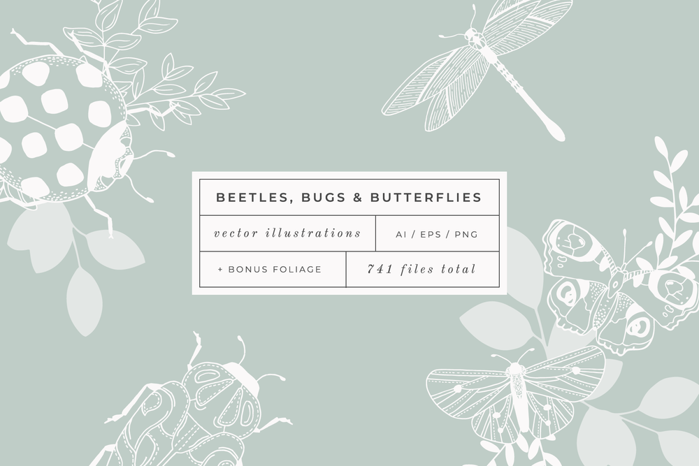 Beetles, Bugs & Butterflies, Vector Illustration pack available on Creative Market - by Bea & Bloom Creative Design Studio