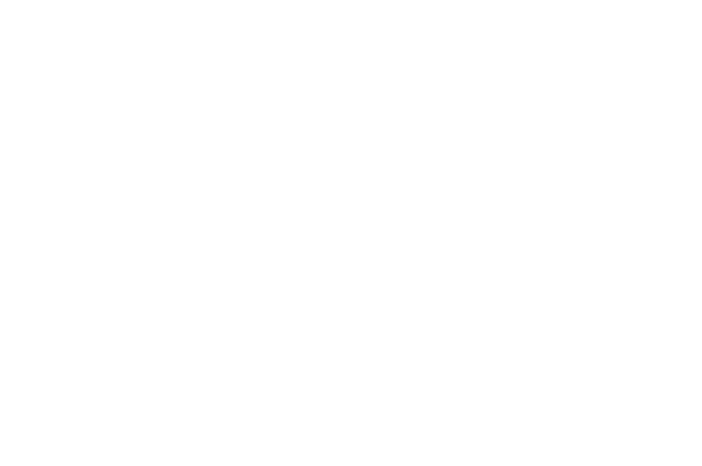 OFFICIAL SELECTION - Fear No Film Festival - 2018.png