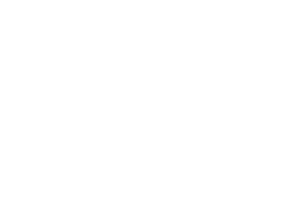 OFFICIAL SELECTION - New Forest Film Festival - 2018 (2).png