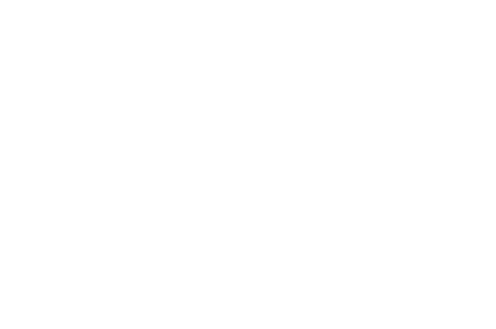 OFFICIAL SELECTION - COURT MTRANGE FESTIVAL EUROPEN DU COURT MTRAGE INSOLITE ET FANTASTIQUE - 2018.png