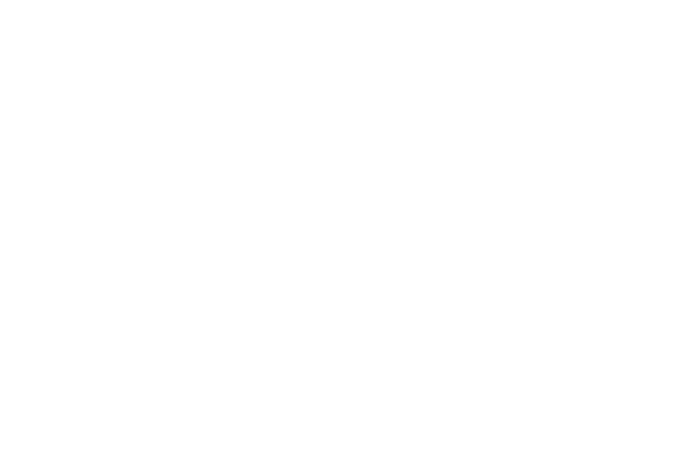 OFFICIAL SELECTION - Leiden International Short Film Experience - 2018.png