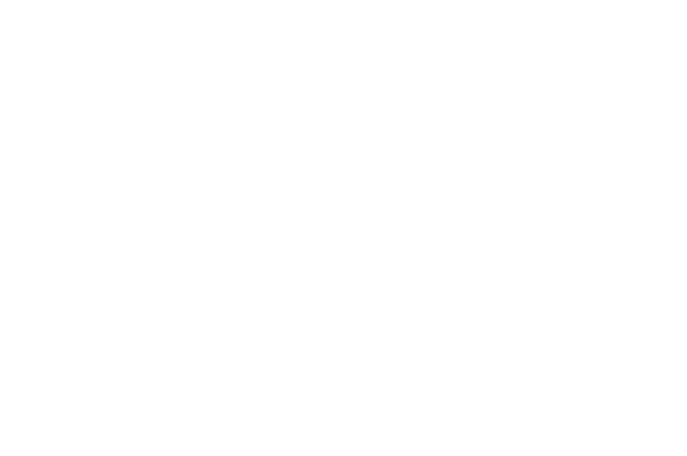 OFFICIAL SELECTION - Lift-Off Sessions - 2018.png