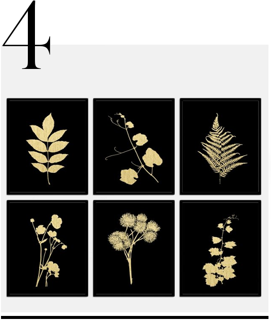 Plant-Study-II-One-Kings-Lane-home-improvement-black-home-decor-accessories-ideas