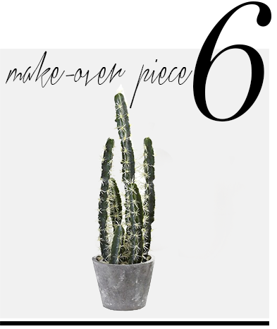 cactus-Maya-Zepinic-home-improvement-ideas-celebrity-designers-top-ten-room-decor-essentials