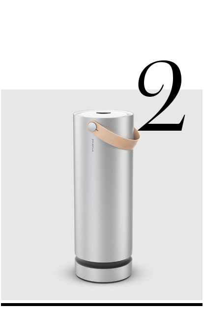 Molekule-air-purifier-whitney-tingle-danielle-duboise-home-improvement-ideas-10-top-home-essentials
