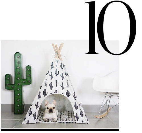 Cactus-Dog-Teepee-Pipolli-luxurious-gifts-for-pet-lovers-top-ten-STYLISH-gift-ideas