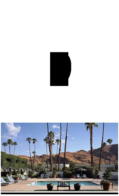 Palm-Springs-Pool-designer-travel-tips-los-angeles-david-meister