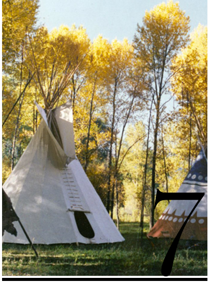 Tipi-Tepee-Teepee-Dwelling-westside-collective-heather-roma-top-10-most-wanted-eco-friendly-gifts