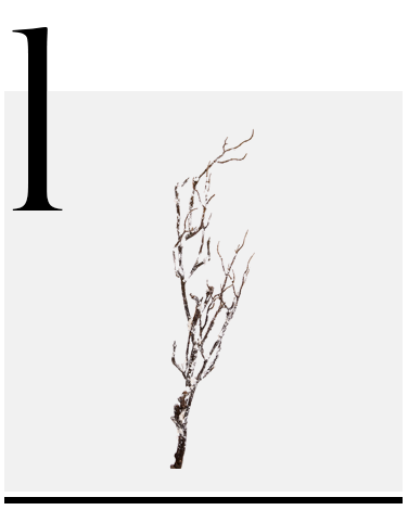 Snow-Branch-Christmas-Ornament-Brown-White-Amara-top-10-holiday-decorations-minimalist