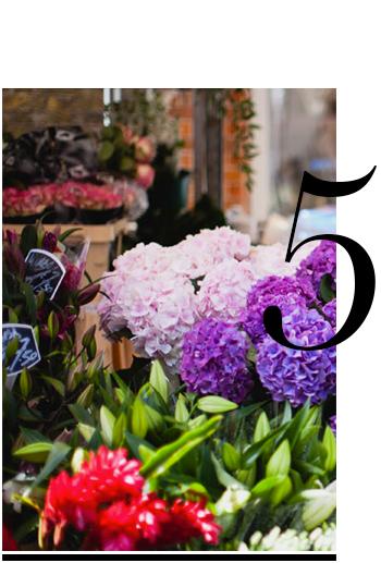 Columbia-Road-flower-market-top-10-east-london-places-to-visit