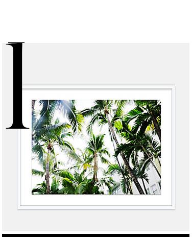 Miami-Palms-Natalie-Obradovich-One-Kings-Lane-top-10-miami-inspired-decor