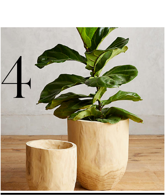 Aux-Bois-Planter-Set-Anthropologie-top-10-miami-inspired-decor