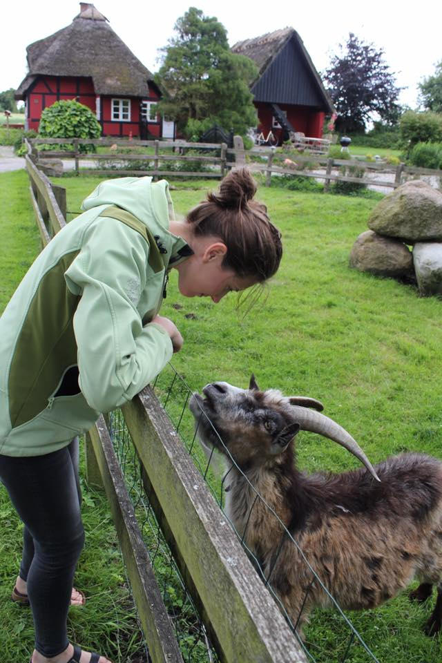 Here's a completely unrelated picture of me and a goat-friend that I made while traveling in Denmark.
