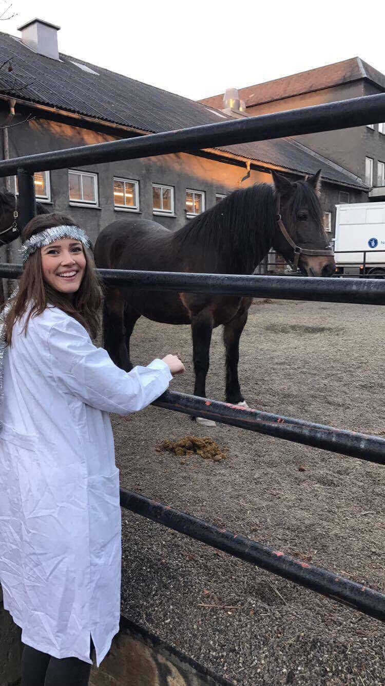 Here I am trying to pet the same stubborn horse yet again, and you can see her giving me the side-eye. Even when I'm all done up with tinsel in my hair for Saint Lucy's Day, I'm still getting rejected by that anti-social horse. (I kid, I kid, of course)