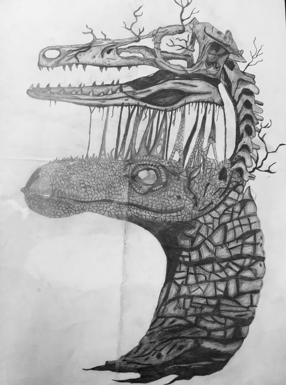 Kyle McConnon 3rd year art student for his fantastic drawing skills displayed in his artwork of a dinosaur.