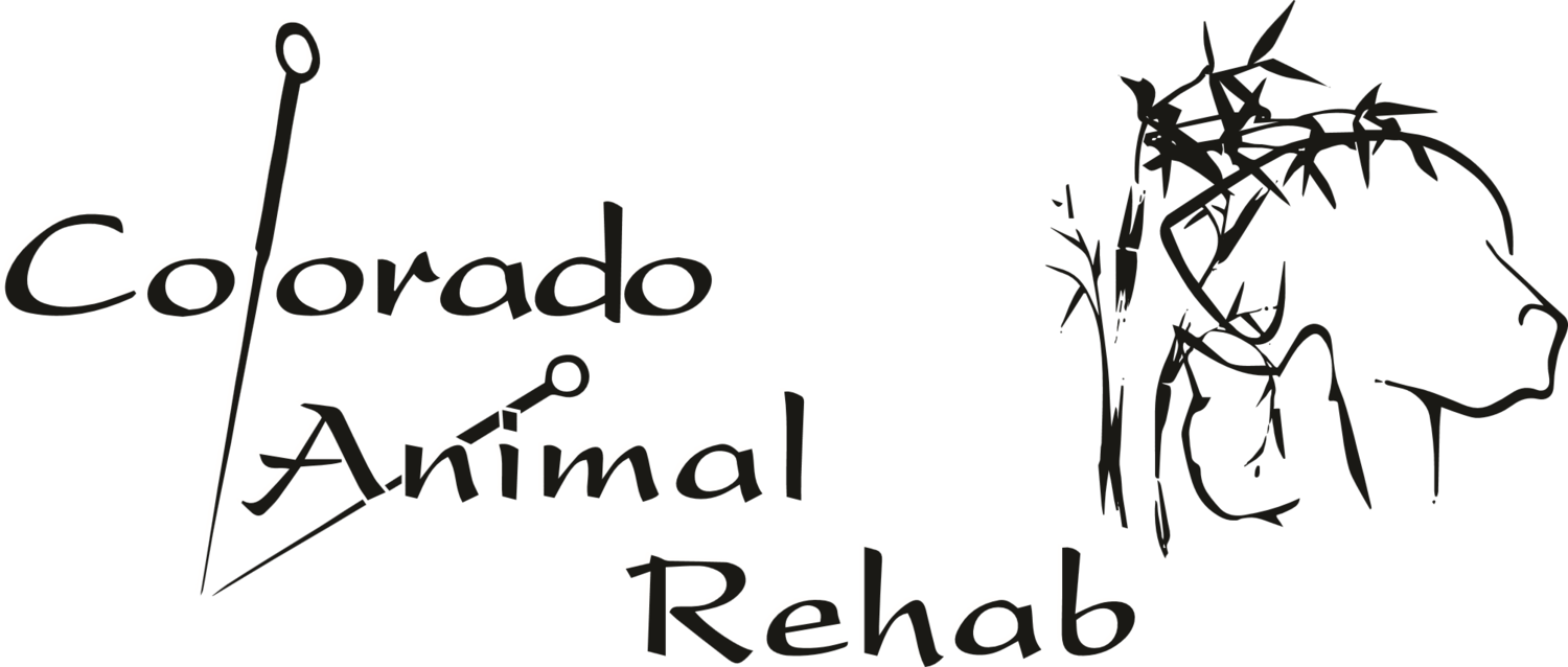 Colorado Animal Rehab