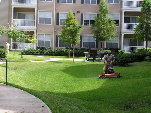 Residential and Commercial Landscaping Services - Residential And Commercial Landscaping Services — DRIVEWAYS PAVERS