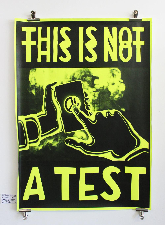 THIS IS NOT A TEST ARTWORK GREG AK ALLEYKATS POSTER GRAPHIC.jpg