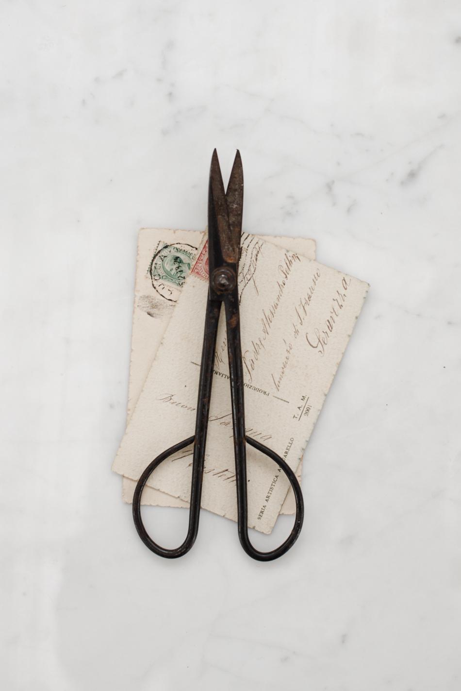 Una cliente giapponese sostiene che queste fossero bonsai scissors. chissà? Le ho ereditate dal padre di mia suocera.